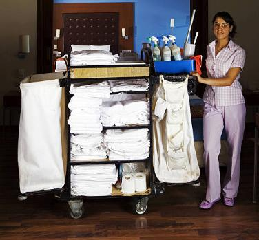 hotel cleaning professional
