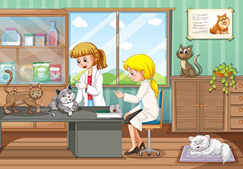 animal hospital cleaning
